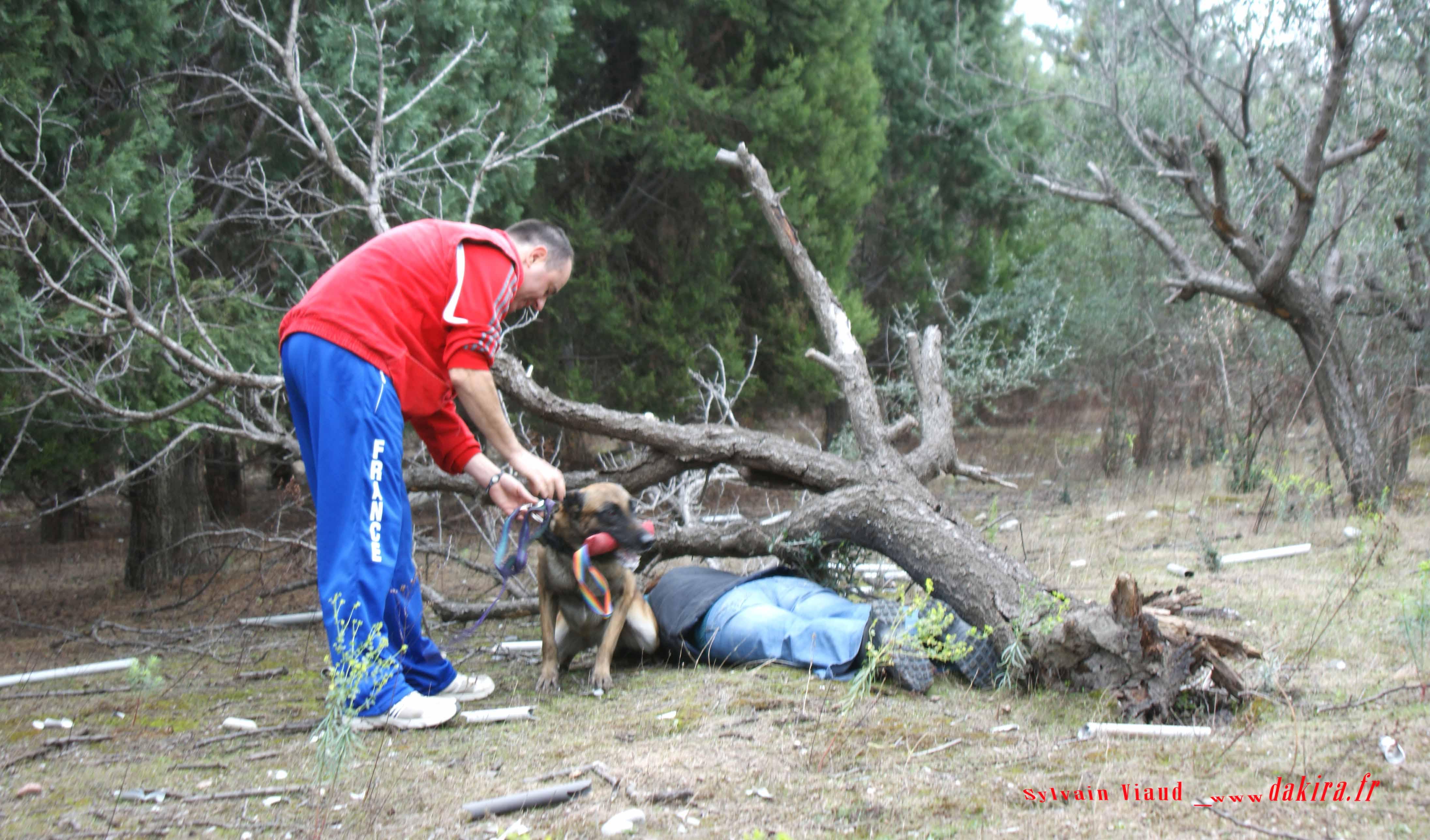 club canin aspres sur buech